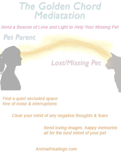 Golden Chord Mediation to Bring Lost Pets Home