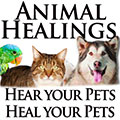 Animal Healings logo