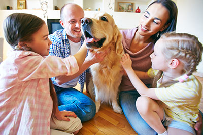 Benefits of Animal Communication - a happy pet family