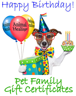 Birthday Pet Gift Certificates