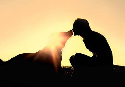 Animal communication helps pet loss grief