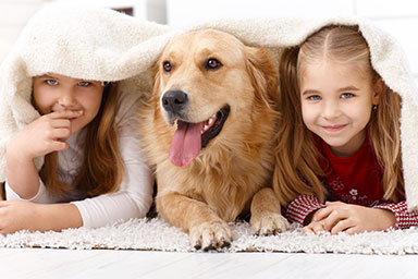 Photo of two girls lying under a blanket, on either side of a dog.