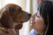 Animal communication can help resolve past grief issues