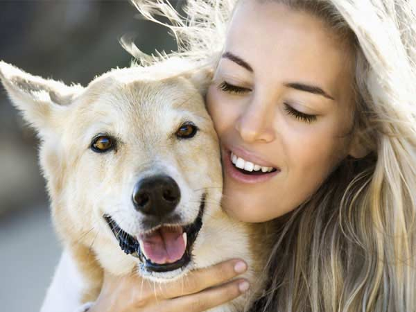 animal reiki helps pets of all species heal faster