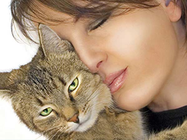 reiki testimonials show how reiki helps all animals